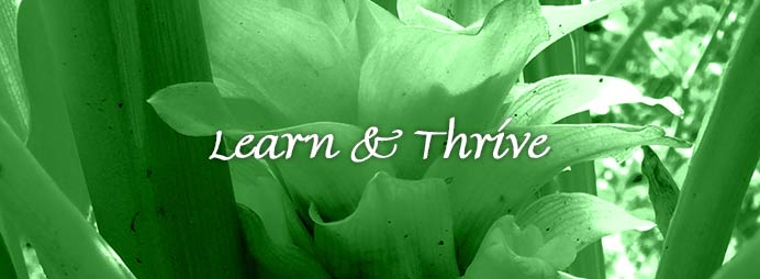 Learn and Thrive
