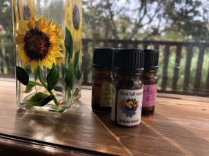 Photo From: Diffuser Blends – 5 different blends to choose from